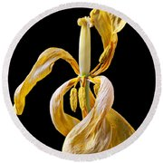 Dried Tulip Round Beach Towel