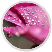 Droplet On Rose Petal Round Beach Towel