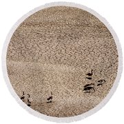 Drought Round Beach Towel