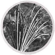 Dry Queen Anns Lace II Round Beach Towel