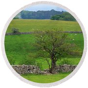 Dry Stone Wall And Twisted Tree Round Beach Towel