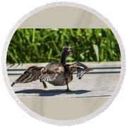 Duck And Run Round Beach Towel