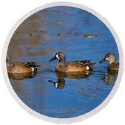 Ducks In A Row Round Beach Towel