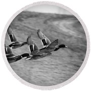 Ducks In Flight V2 Bw Round Beach Towel