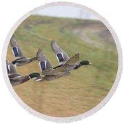 Ducks In Flight V3 Round Beach Towel
