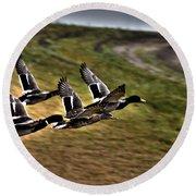 Ducks In Flight V5  Round Beach Towel