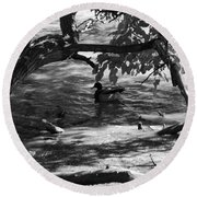 Ducks In The Shade In Black And White Round Beach Towel