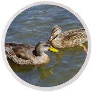 Ducks In The Sun Round Beach Towel