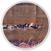 Ducks On Canvas Round Beach Towel