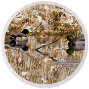 Ducks Reflect On The Days Events Round Beach Towel
