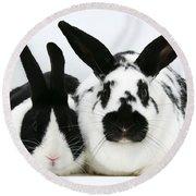 Dutch Rabbits Round Beach Towel