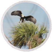 Eagle In The Palm Round Beach Towel