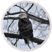 Eagle In The Wild Round Beach Towel