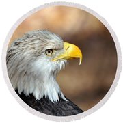Eagle Right Round Beach Towel