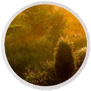 Early Gloaming Round Beach Towel by Ron Jones
