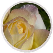 Early Morning Peace Rose Round Beach Towel