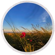 Early Poppies Round Beach Towel