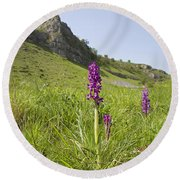Early Purple Orchids Round Beach Towel