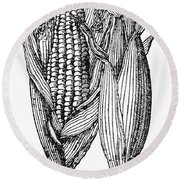 Ears Of Maize Round Beach Towel