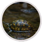 Eastern Box Turtle Round Beach Towel