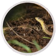 Eastern Garter Snake - Checkered Coloration Round Beach Towel