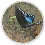 Eastern Tiger Swallowtail 8537 3215 Round Beach Towel