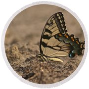 Eastern Tiger Swallowtail 8542 3219 Round Beach Towel