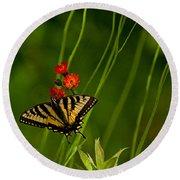Eastern Tiger Swallowtail Round Beach Towel