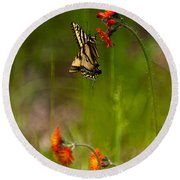 Eastern Tiger Swallowtail Profile Shot Round Beach Towel