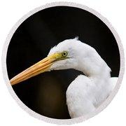 Egret - Old Whitey Round Beach Towel