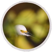Egret Abstract Round Beach Towel