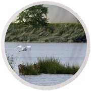 Egret Over Water Round Beach Towel