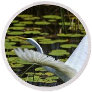Egret Take Off Round Beach Towel