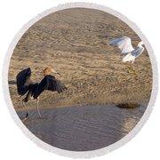 Egret Territory Round Beach Towel
