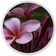 Eia Ku'u Lei Aloha Kula - Pua Melia - Pink Tropical Plumeria Maui Hawaii Round Beach Towel