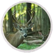 Eight Point And Fawn_9532_4367 Round Beach Towel