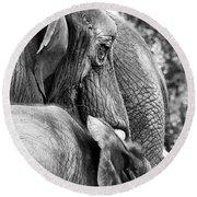 Elephant Ears Round Beach Towel