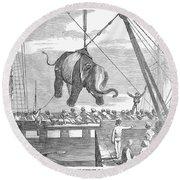 Elephant Hoist, 1858 Round Beach Towel