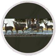 Eleven Deer Standing Round Beach Towel