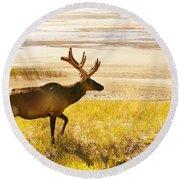Elk Wanders On Yellow Landscape Round Beach Towel