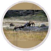 Elks Rutting Round Beach Towel