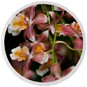 Emma's Orchid Round Beach Towel