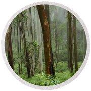Australia Enchanted Forest Round Beach Towel