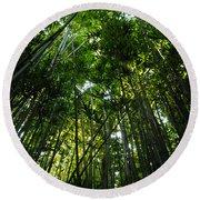 Enchanted Forest Haleakala National Park Round Beach Towel