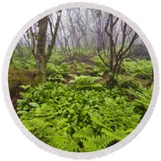 Enchanted Woodland Forest In Fog Blue Ridge Parkway In North Carolina Round Beach Towel
