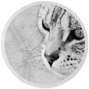 Eternal Stare Down Round Beach Towel