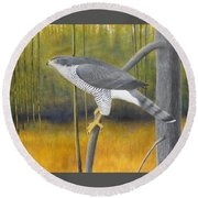 European Goshawk Round Beach Towel