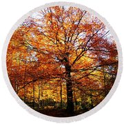Eye Of The Forest Round Beach Towel