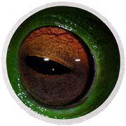 Eye Of The Frog Round Beach Towel