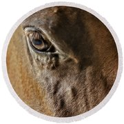 Eye Of The Horse Round Beach Towel